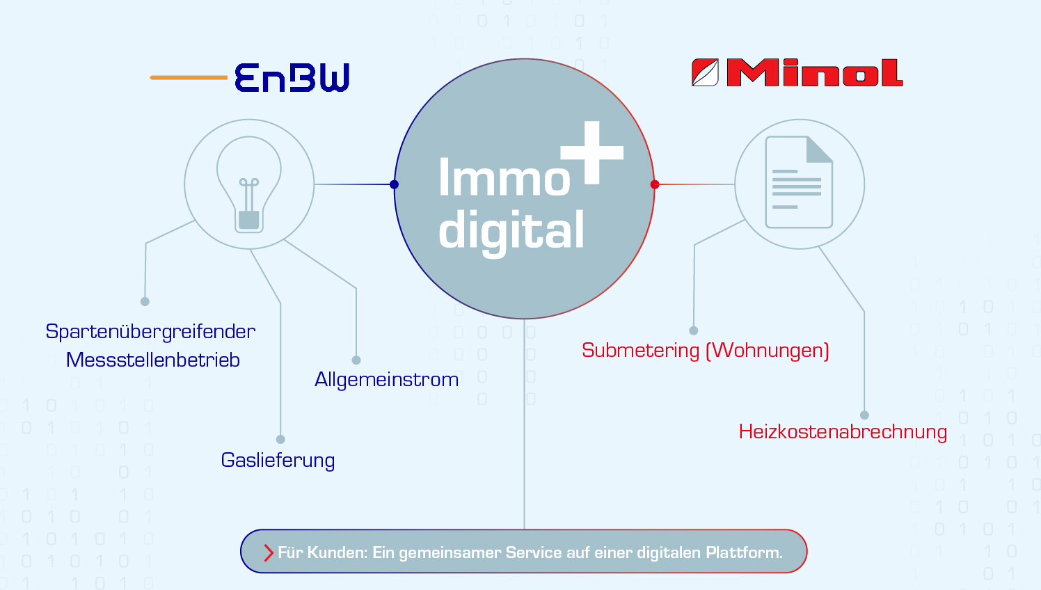 enbw ablesung